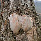 Booty Tree by peasticks