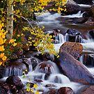 Colorado 2013 by John De Bord Photography by John  De Bord Photography