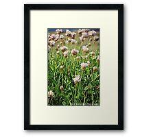 Flowers at Lands End Framed Print