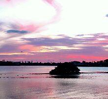 Cheery Sunset over the Water by ♥⊱ B. Randi Bailey