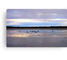 Shallow Lake  Canvas Print