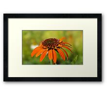 'Tiki Torch' Framed Print