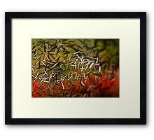 Pseudo Bacterium  Framed Print