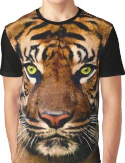 Painted Tiger's Face Graphic T-Shirt