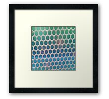 BehindThe Wire Framed Print