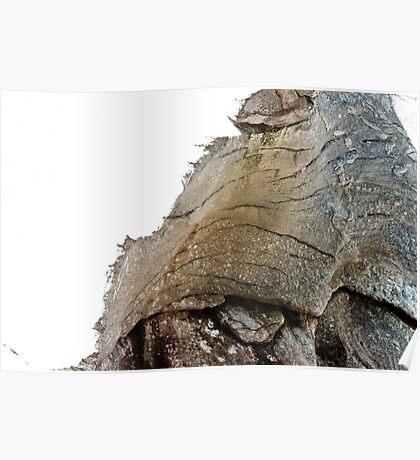 Elephant stone Poster