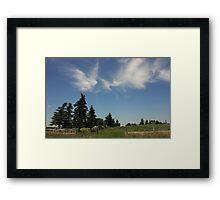 Prairie Shelterbelt Framed Print
