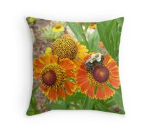 Cone Flowers With Bee Throw Pillow