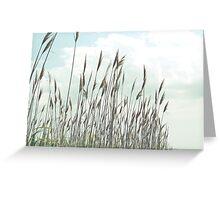 God's Paintbrush Greeting Card