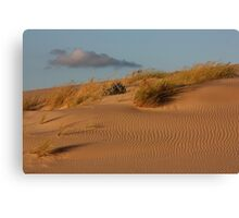 Dune 7848 Canvas Print