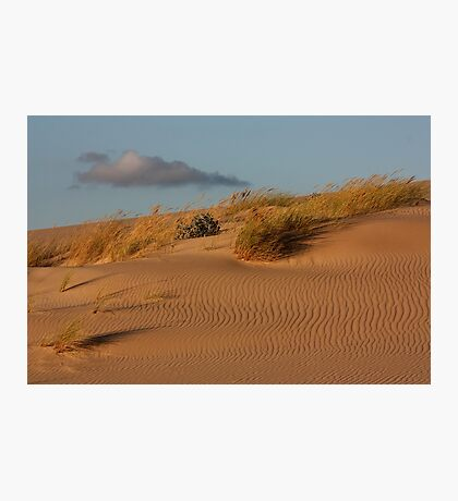 Dune 7848 Photographic Print