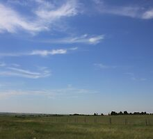 Mare's Tails Over the Prairie by Jim Sauchyn