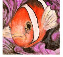 Not Nemo by ACImaging