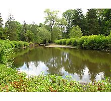 Edwards Gardens in the green Photographic Print