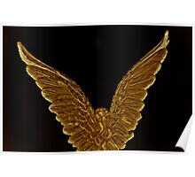 Wings of Gold Poster
