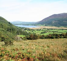 View to Bassenthwaite  by Marilyn Harris