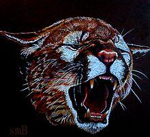 Wild Warning by Susan Bergstrom