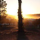 sunrise by KBG-Photography