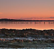 The Oyster Farm, Tanilba Bay by bazcelt