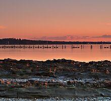 The Oyster Farm, Tanilba Bay by bazcelt