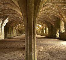 The Cellarium . by Irene  Burdell