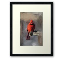 Just An Ordinary Day Framed Print