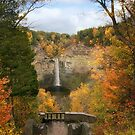 Taughannock Falls Splendor by Jessica Jenney