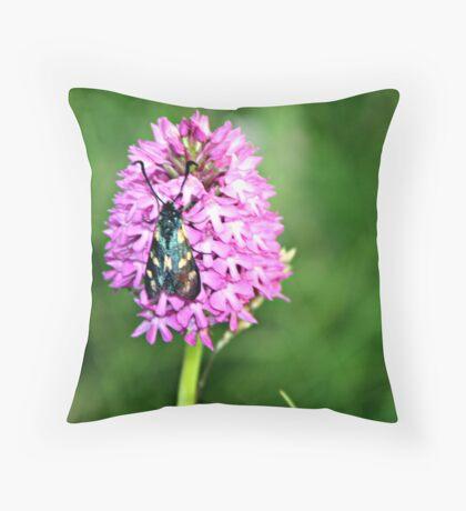 PYRAMIDAL ORCHID . Throw Pillow