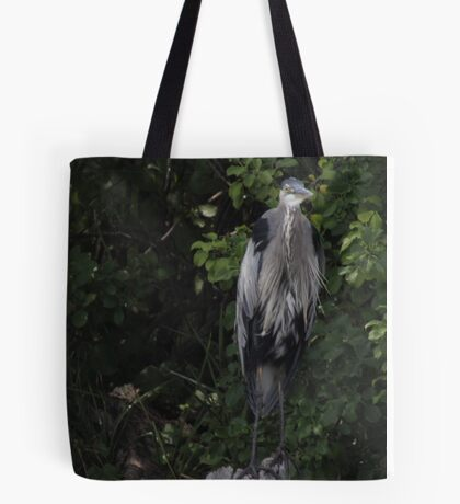 Great Blue Heron from Okauchee Wisconsin Tote Bag