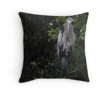Great Blue Heron from Okauchee Wisconsin Throw Pillow
