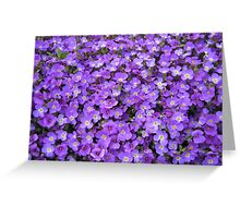 May Flowers of Gimmelwald, Switzerland Greeting Card