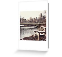 Early Winter in Central Park Greeting Card