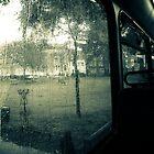 summer dreaming by Dorit Fuhg