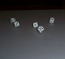 Roll of the Dice by andy1316