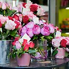 Flower Market in Paris by BigshotD3