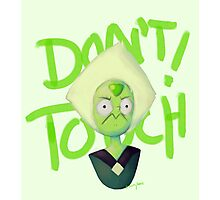 Don't Touch! Photographic Print
