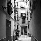 Barcelona by PaulSava