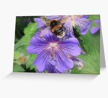 Buzz Off... Greeting Card