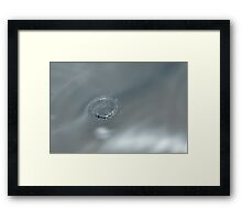 Silver Crown Framed Print