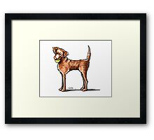 Let's Play Chessie Framed Print