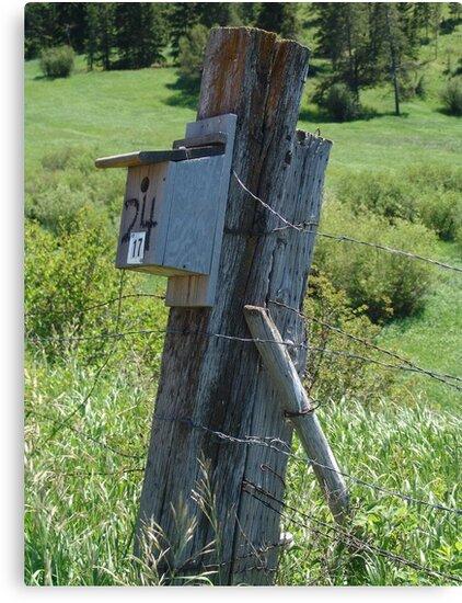 BLUEBIRD HOUSE NEAR BOZEMAN, MT by May Lattanzio