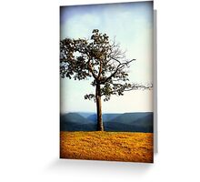 Lone Tree on Mountainside Greeting Card