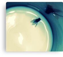 Fly in the Milk Canvas Print