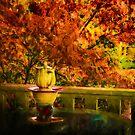 Autumn Set by Steve Walser