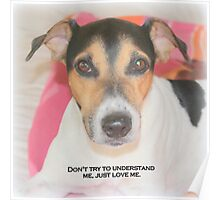 Old English Jack Russell Poster