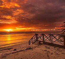 Stairway to the Sun by Karen Willshaw