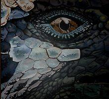 Marine Iguana by Rebecca Koller
