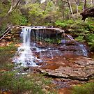 Weeping Rock by Martin Pot