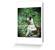 contemplative moment Greeting Card