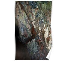Untitled- Murray Cave Poster